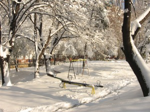 The playground.