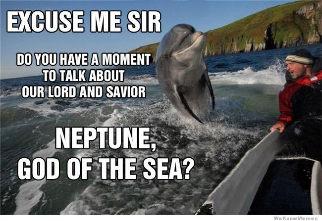 excuse-me-sir-dolphin