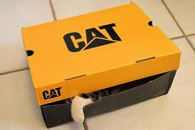 "It even says ""cat"" on the box."