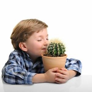 Hello, Mr. Cactus