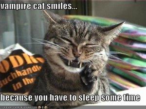 Vampire kitty doesn't fear the sun.