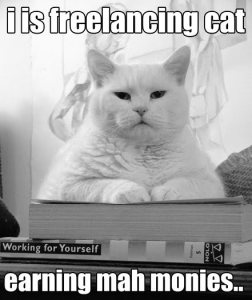 freelancecat